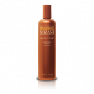 Shampooing Botanifying 250 ml